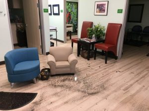 After Hurricane Harvey - Dirty Office